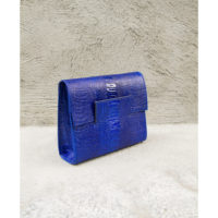 Ice Clutch Royal Blue