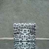 Ice Clutch Black White Leopard Print Calf Leather