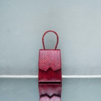 Alpha Mini Wine Red Ayers Snake Skin