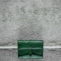 Box Clutch Elongated Green Ayers Snake Skin